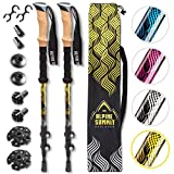 walking stick plant Alpine Summit Hiking/Trekking Poles with Quick Locks, Walking Sticks with Strong and Lightweight 7075 Aluminum and Cork Grips - Enjoy The Great Outdoors