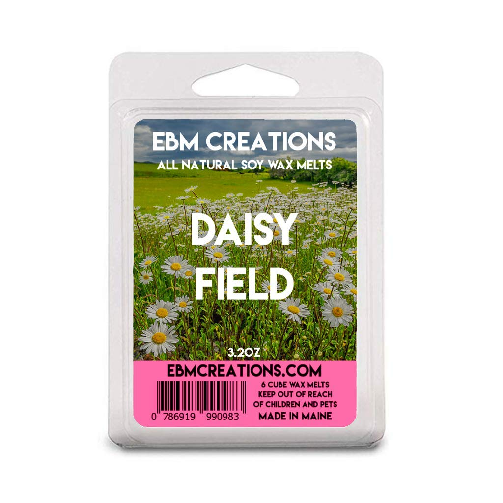 Daisy Field Scented All Natural Soy Wax Melts 6 Cube Clamshell 3.2oz Highly Scented!