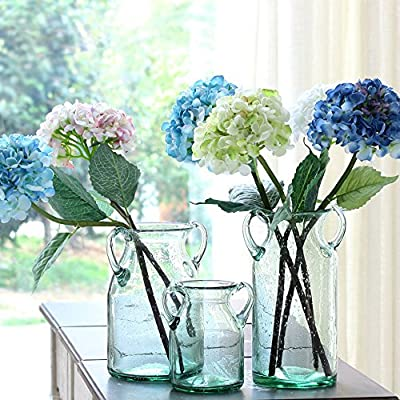 """Noah Decoration Double Ear Hand-Blown and Handmade Transparent Flower and Filler Bubble Glass for Home and Wedding Indoor and Outdoor Decoration Size Large - The dimensions of the vase is 7.4"""" x 7.4"""" x (Height) 11.3"""" BEAUTIFUL DECORATION with your favourite flowers and filler or plant for home and wedding indoor and outdoor. GREAT GIFT for house warming, wedding ceremony, conference, and hotel decoration. - vases, kitchen-dining-room-decor, kitchen-dining-room - 61rlxVvmAaL. SS400  -"""