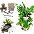 Garden Stacker Planter + Indoor Culinary Herb Garden Kit - Great Gift Idea - Grow Cooking Herbs - Seeds: Parsley, Thyme, Cilantro Mustard & Sage, More - Includes Stackable Planter