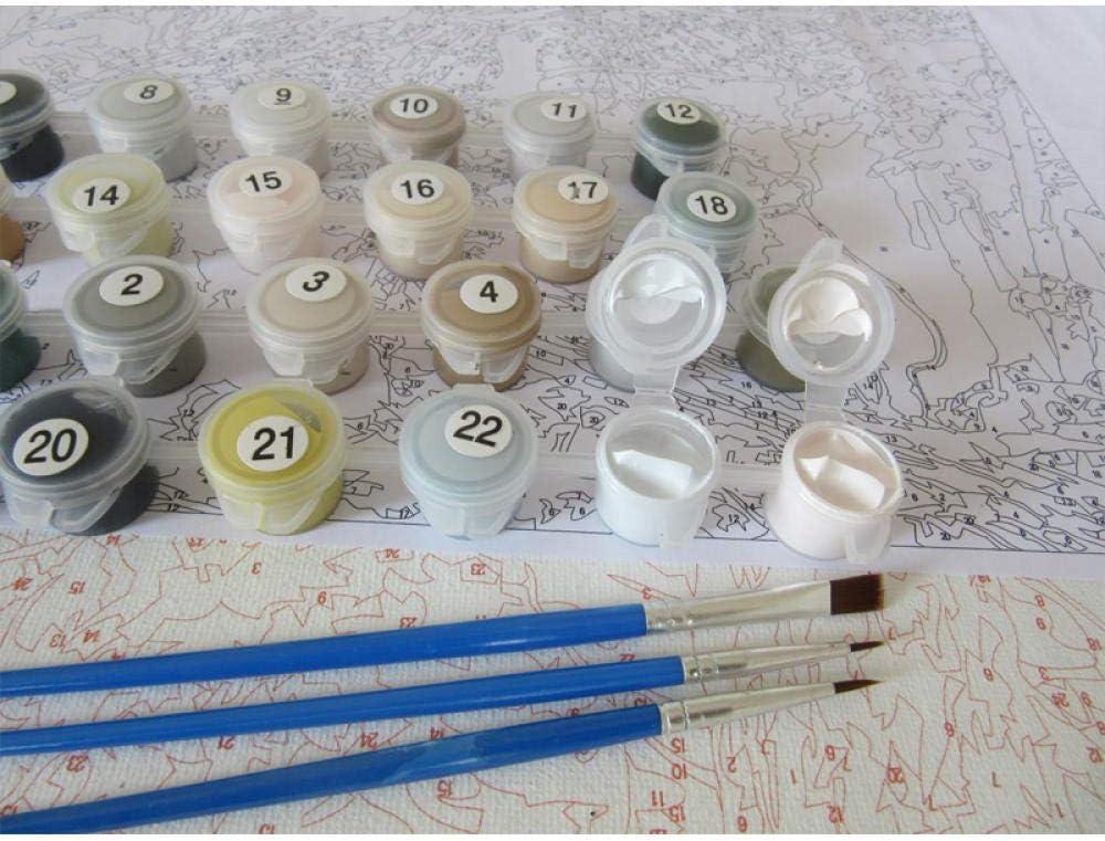LULCLY Peinture par Num/éros Kits P/êcheur Et /Él/éphant Adultes Enfants A/în/és D/ébutant Junior Acryliques Bricolage Kits De Peinture /À lhuile 40X50Cm