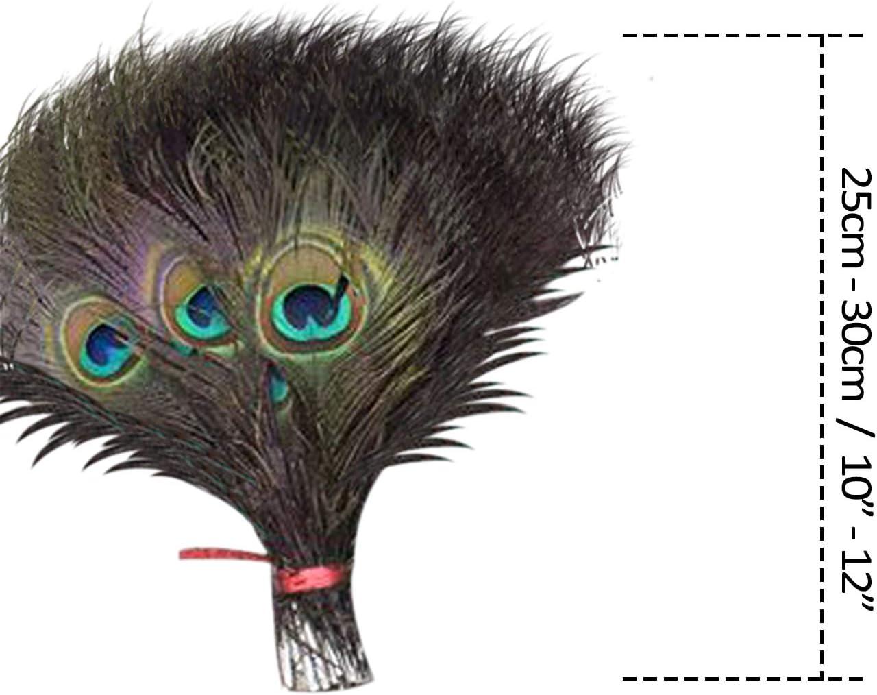 10pcs Bricolaje Arte y Artesan/ía 15-18 Medio Trimming Shop Real Pluma de Pavo Real P/ájaro Cola Colorido Plumas Paquete para Boda Navidad Fiesta Centro Decoraci/ón