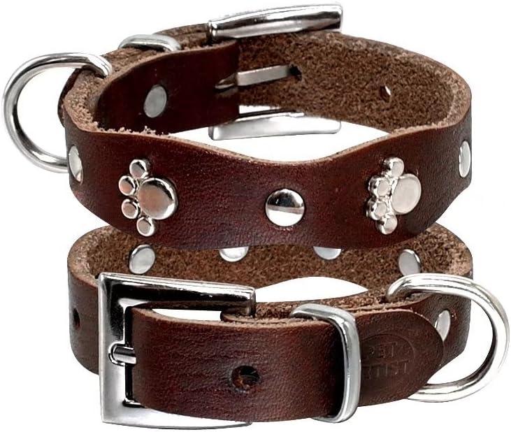 PET ARTIST - Collar de Piel para Perro pequeño con Tachuelas de Pata Suave para Mascota Cachorro Chihuahua XXS XS S M marrón