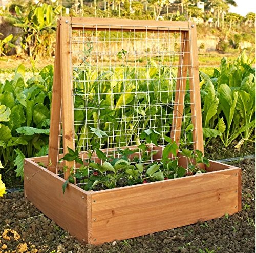 Garden Planter Trellis Crafted From Beautiful and Durable Fir Wood in...