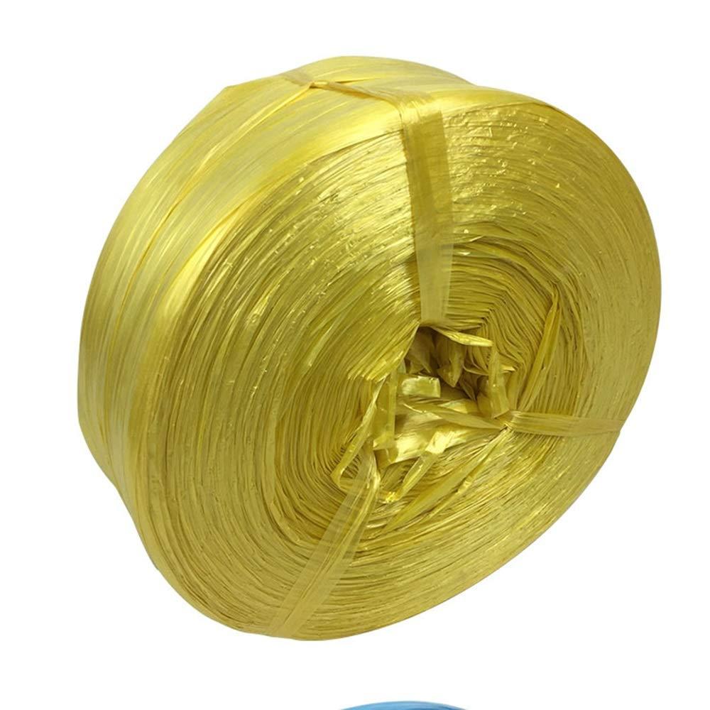 DEWUFAFA 4cm幅ひも結束ロープ/プラスチックロープ/梱包用ベルトロープ/同梱ロープ引き裂きベルト-5色 (Color : Yellow, Size : 2cm) B07ST2NRV8 Yellow 2cm