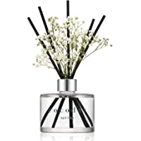 Cocod'or Preserved Real Flower Reed Diffuser, April Breeze Reed Diffuser, Reed Diffuser Set, Oil Diffuser & Reed Diffuser Sticks, Home Decor & Office Decor, Fragrance And Gifts, 6.7Oz