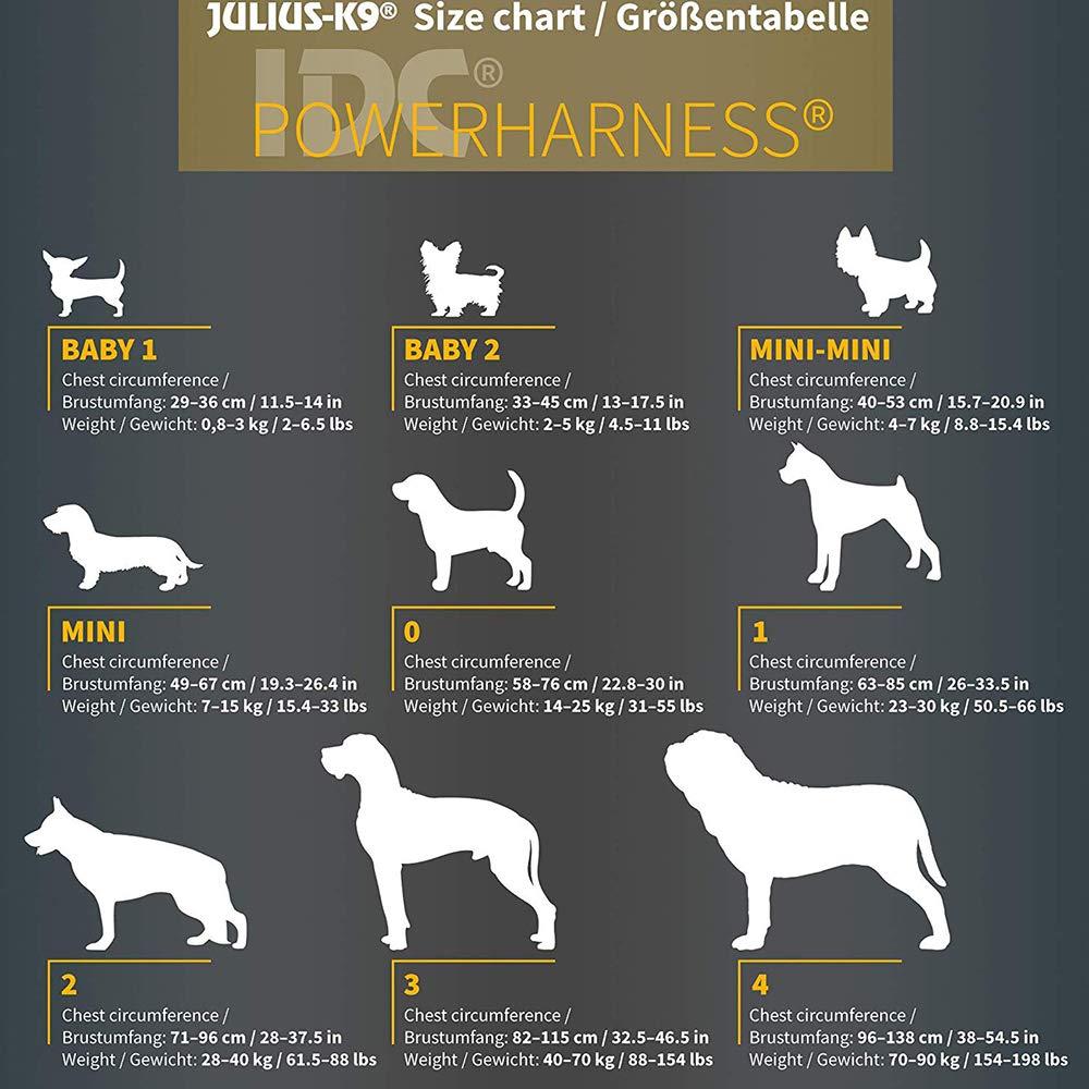 Trixie - Arnés Julius-K9 Dog IDC MINI para perros: Amazon.es: Ropa ...