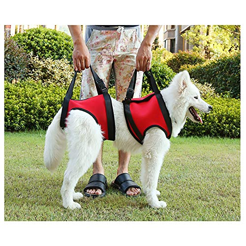 QEES Dog Lift Harness Set, Front Legs & Rear Legs Lift Support Vest, Assist Sling Support for Elderly Or Arthritis Dogs FZD02 (L)