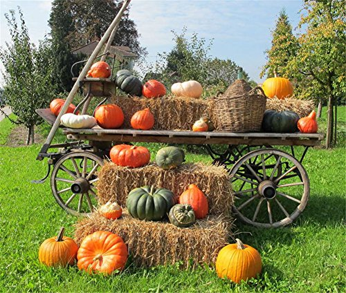 5x7 Photography Backdrop Halloween Village Farm Pumpkin Wood