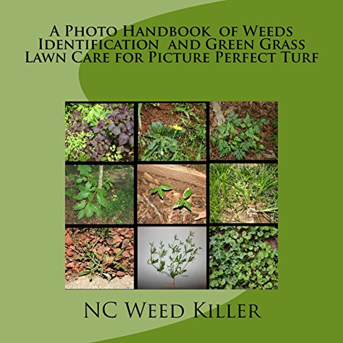 a-photo-handbook-of-weeds-identification-and-green-grass-lawn-care-for-picture-perfect-turf