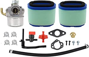 Hippotech Carburetor with 2 PCS Air Filter Fuel Hose for Briggs & Stratton 591925 698479 693518 698475 Engine Motor