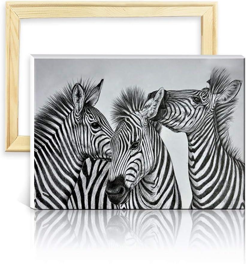 ufengke Kit Pintura de Diamantes 5D Cebra Blanca Negra Punto de Cruz Diamante Completo DIY para Amantes del Arte, con Marco de Madera, Diseño 25x35cm