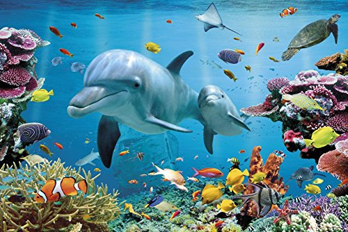 Tropical Dolphins Art Print Poster - 24x36 Animal Poster Print, 36x24]()