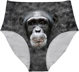 e79fb75dcf39 Nopersonality Cool Animals Women s Pack of 6 High-Rise Girdle Panties  Invisible