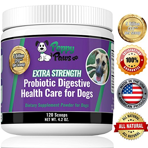 All Natural Probiotic For Dogs