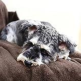 PAWZ Road Dog Blanket Fluffy Skin-Friendly and