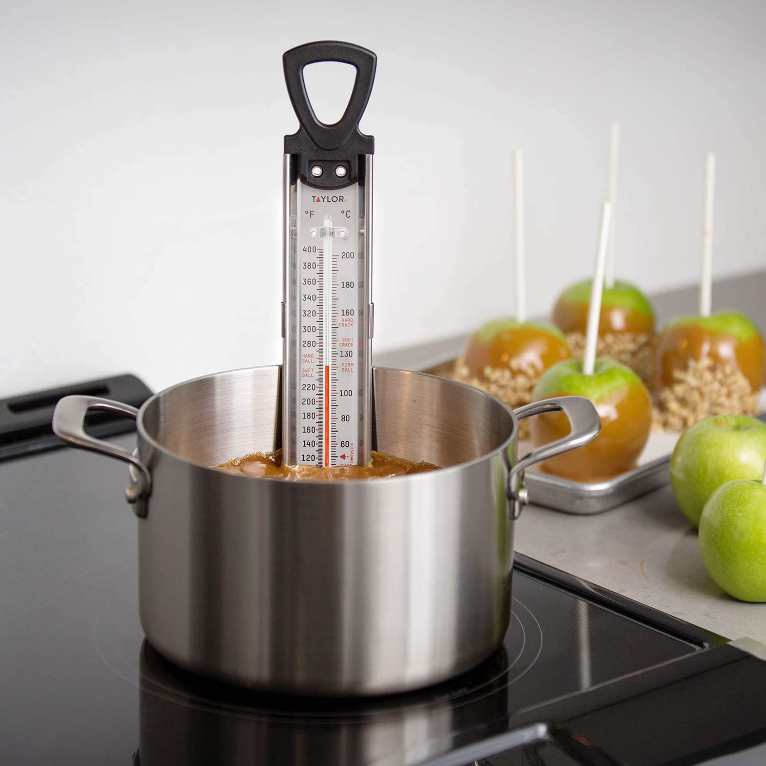 Taylor Precision 5983 RA17724 Deep Fry Thermometer
