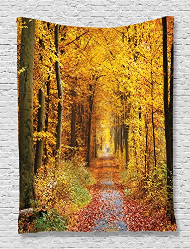 - Ambesonne Forest Tapestry, Seasonal Foliage Leaves Bushes in Autumn Colors Countryside Pathway in Forest, Wall Hanging for Bedroom Living Room Dorm, 60