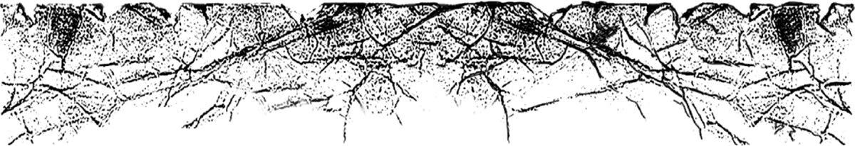 Stamperia Intl WTKCC78 Stamperia Cling Stamp 5.5X7-Vellum Paper Effect