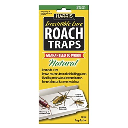 Amazoncom Harris Roach Glue Traps w Lure 2Pack Natural