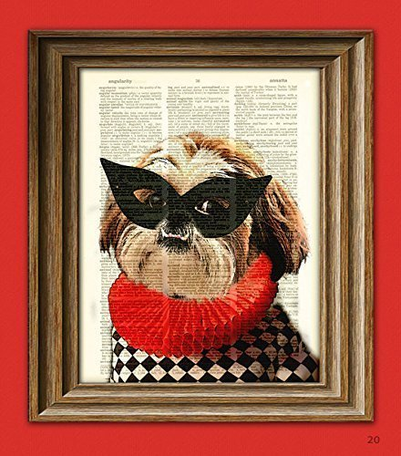 Princess Underbite Shih Tzu Harlequin dog with mask upcycled Dictionary Page book art print