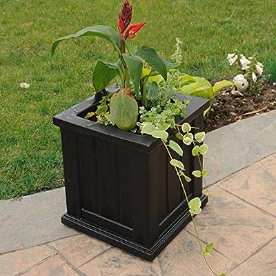 Mayne 4836B Cape Cod Planter, Black, 14 -Inch : Self Watering Planters : Garden & Outdoor