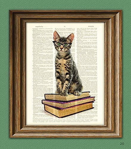 Book Cat In Cats Eye Glasses. Early Reader Kitten Illustration Beautifully Upcycled Dictionary Page Book Art ()