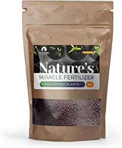 Golden Bird Indoor Plant Food - Organic Material Fertilizer - for Potted Plants - Contains All Plant Nutrients - 6oz