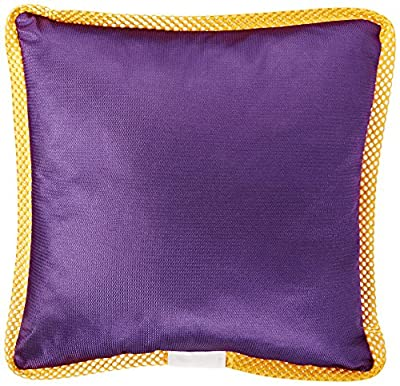 NCAA Notre Dame Fighting Irish Sidelines Toss Pillow