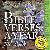 365 Bible