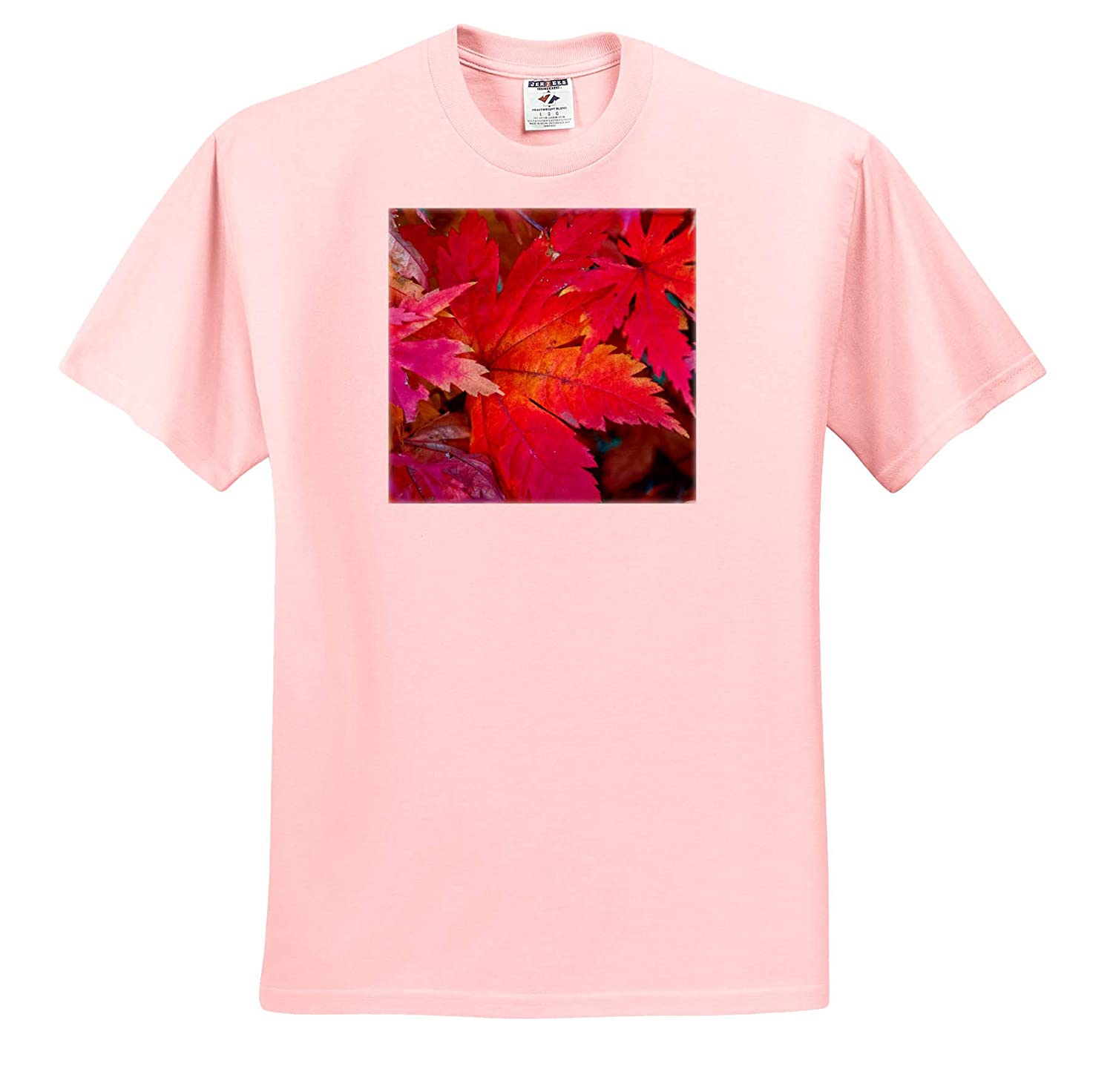 Colors of Autumn T-Shirts Closeup View 3dRose Alexis Photography Seasons Autumn Leaves Red Japanese Maple Tree Leaves