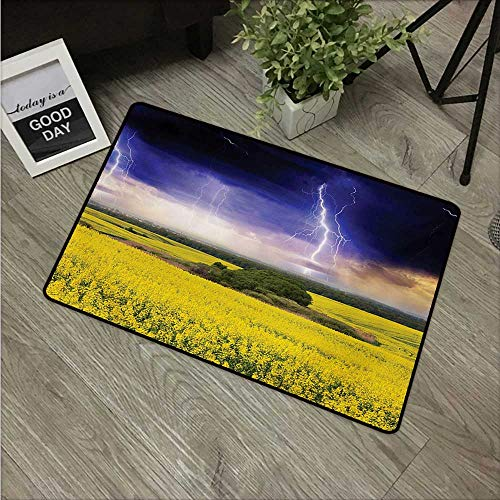 (Anzhutwelve Nature,Cute doormats Majestic Summer Storm Just About to Start Blowing in The Wind Over Meadow W 31