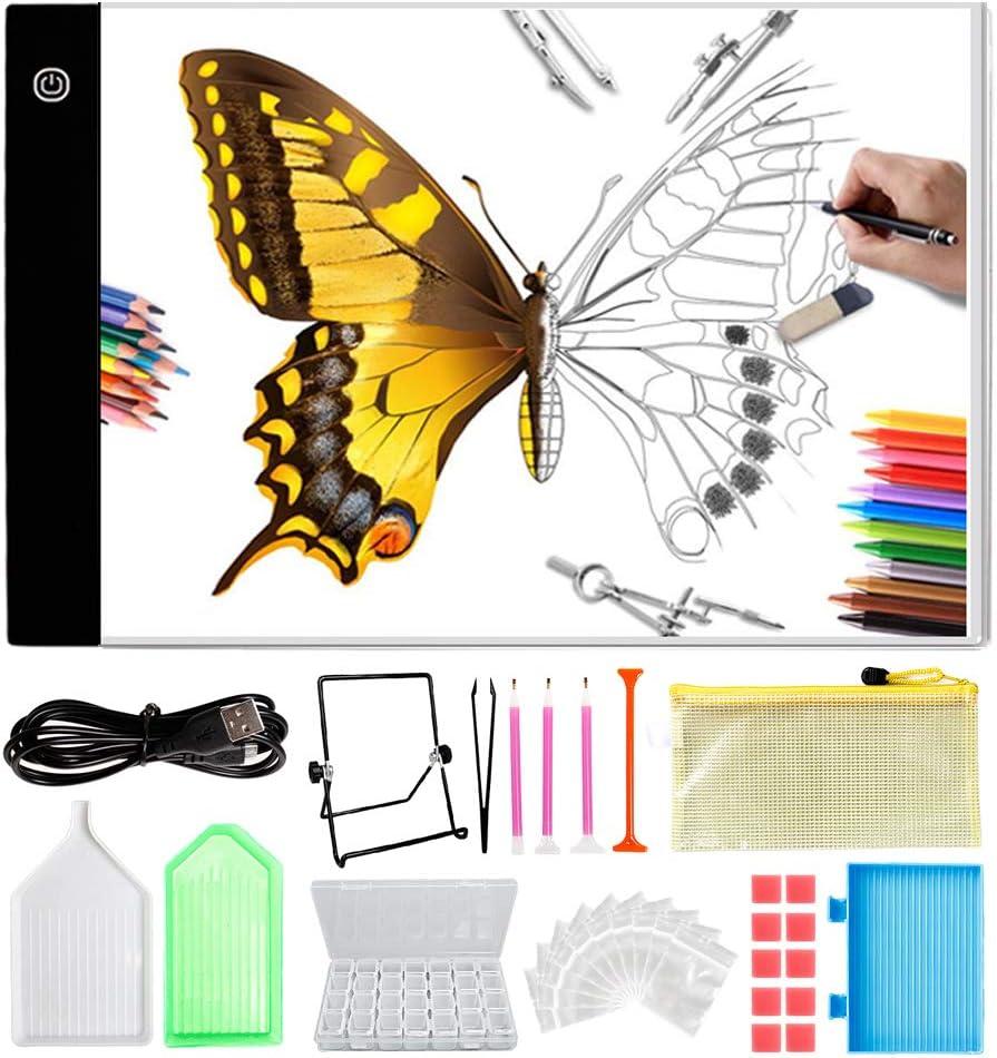RAIN QUEEN - Tablero de luz LED para dibujo, para pintura diamante 5D, juego con herramientas, con caja con compartimientos: Amazon.es: Juguetes y juegos