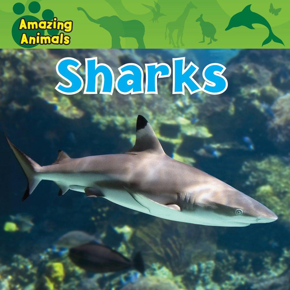 Sharks (Amazing Animals) PDF