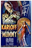 BORIS KARLOFF the mummy MOVIE POSTER 1932 campy classic horror 24X36 SCARY (reproduction, not an original)