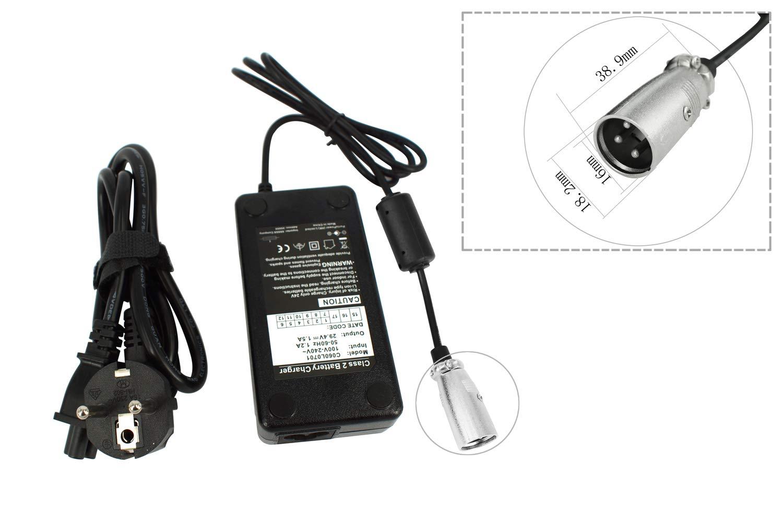 PowerSmart - Cargador para batería de ion de litio de 24 V ...