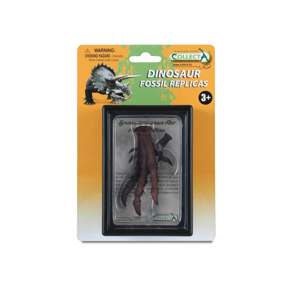 CollectA Prehistoric Life Foot of Tyrannosaurus Rex in Display Case - Paleontologist Approved Dinosaur Fossil Replica 89284