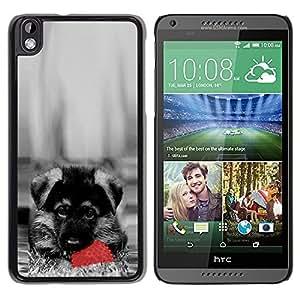LECELL -- Funda protectora / Cubierta / Piel For HTC DESIRE 816 -- Cute Dog German Sheppard Puppy --