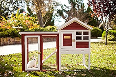 Advantek The Stilt House Rabbit Hutch by Advantek