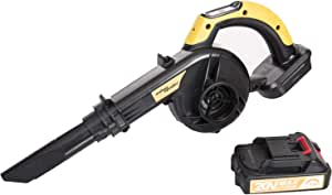 SALEM MASTER Cordless Leaf Blower, 20V Lithium-Ion 2-in-1 Sweeper/Vacuum Work for Clearing Leaf, Dust, Car, Patio/Garden/Deck Cleaning