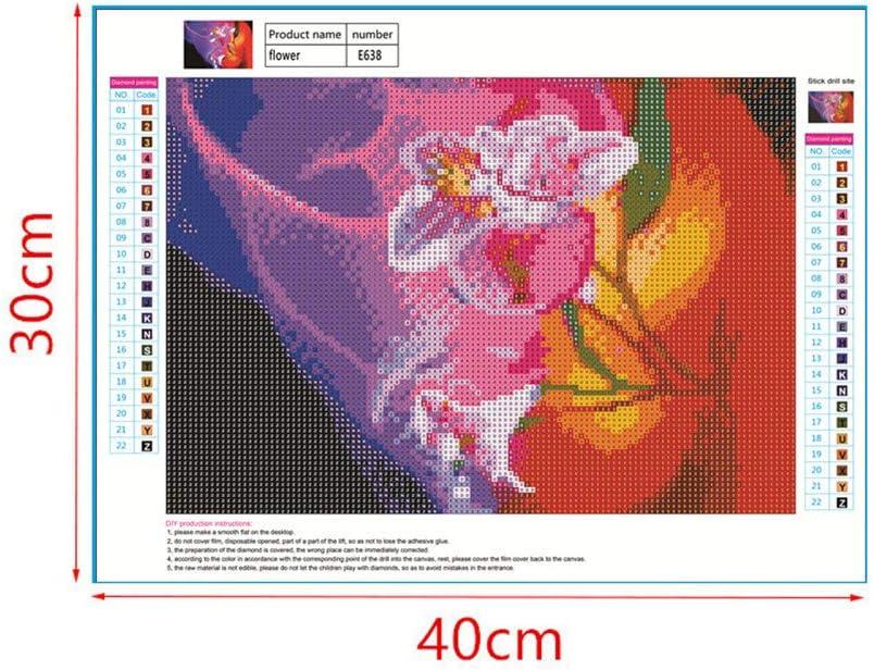 WOBANG 5D - Cuadro de Diamantes de imitación con Bordado en 3D ...