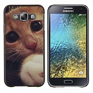 """Be-Star Único Patrón Plástico Duro Fundas Cover Cubre Hard Case Cover Para Samsung Galaxy E5 / SM-E500 ( Lindo gatito asustado triste pata del gato Ojos"""" )"""