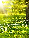 Gentle wind rustling through trees with wind chimes and chirping birds 10 hour ambient sounds video  screensaver sleep yoga  relaxation studying
