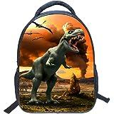 Mochilas Infantiles niño Preescolar, Puesta de Sol Dinosaurio Mochilas Impresión vívida 3D Carteras Escolares Chico…