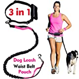 Hands Free Dog Leash for Running Walking Training Hiking, Dual-Handle Reflective Bungee, Poop Bag Dispenser Pouch, Adjustable Waist Belt, Shock Absorbing, Ideal for Medium to Large Dogs