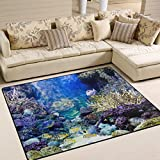 Naanle Beach Theme Area Rug 4'x5′, Caribbean Reef Fish Ocean Animal Polyester Area Rug Mat for Living Dining Dorm Room Bedroom Home Decorative Review