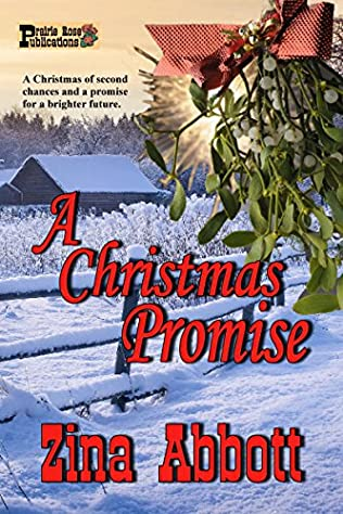 book cover of A Christmas Promise