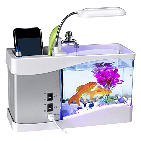 Amazon.com : Zaote Fish Vegetables Water Garden Ecological Acrylic Fish Tank Grows Plants with Led Clock Gardening Gifts Mini Aquaponic Ecosystem Symbiotic ...