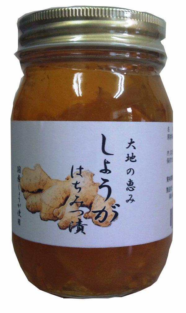 Kasahara apiary ginger honey sauce 500g