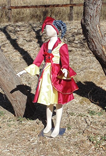 Girls 6-8 4 piece Court Jester Costume Complete with Tri-point hat! by Fru Fru and Feathers Costumes & Gifts